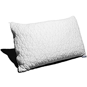 Coop Home Goods - Eden Shredded Memory Foam Pillow with Cooling